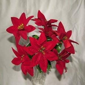 Las mejores flores navideñas