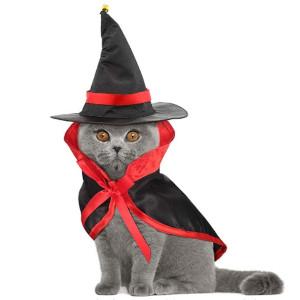 Los Mejores Disfraces para Gatos Halloween