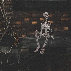 Comprar Esqueletos para Halloween Online